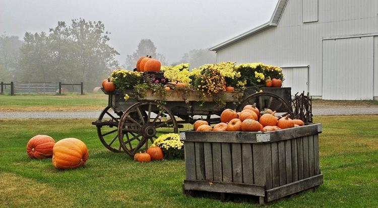 Ритуалы для урожая