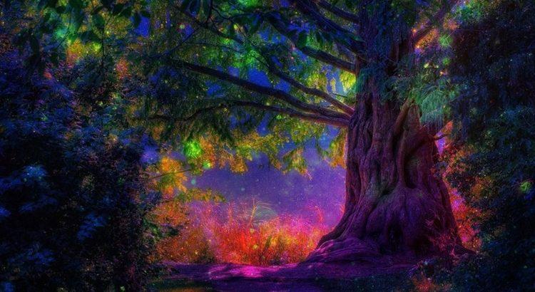 Магия дуба ритуалы на дубовые веточки