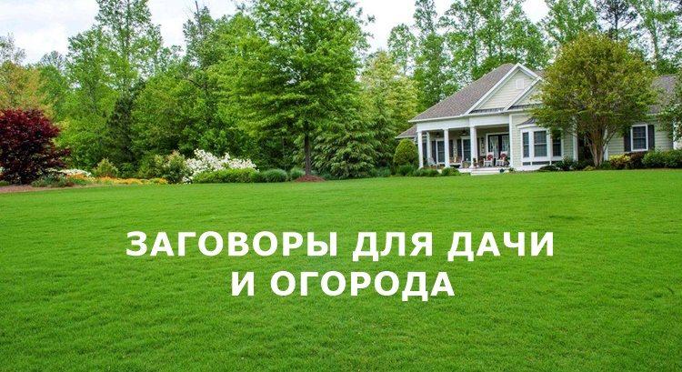Заговоры для дачи и огорода